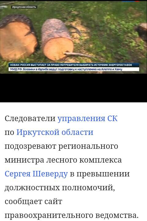 Правительство Иркутской области допустило незаконные вырубки древесины на несколько миллиардов рублей