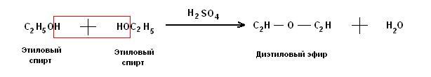 При слабом нагревании спирта с серной кислотой (не выше 140°) каждая молекула воды отщепляется от двух молекул спирта, вследствие чего образуется диэтиловый эфир