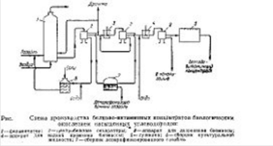 Технологическая схема производства белково-витаминных концентратов БВК fodder yaest биологическим окислением насыщенных углеводородов н-парафинов