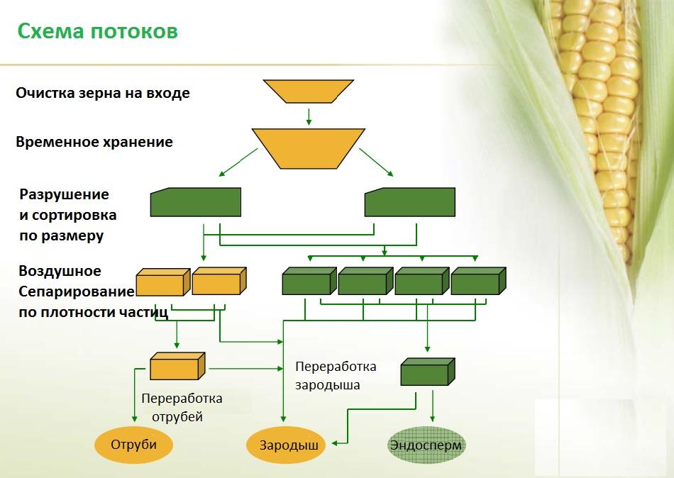 Схема сухой очистки зерна