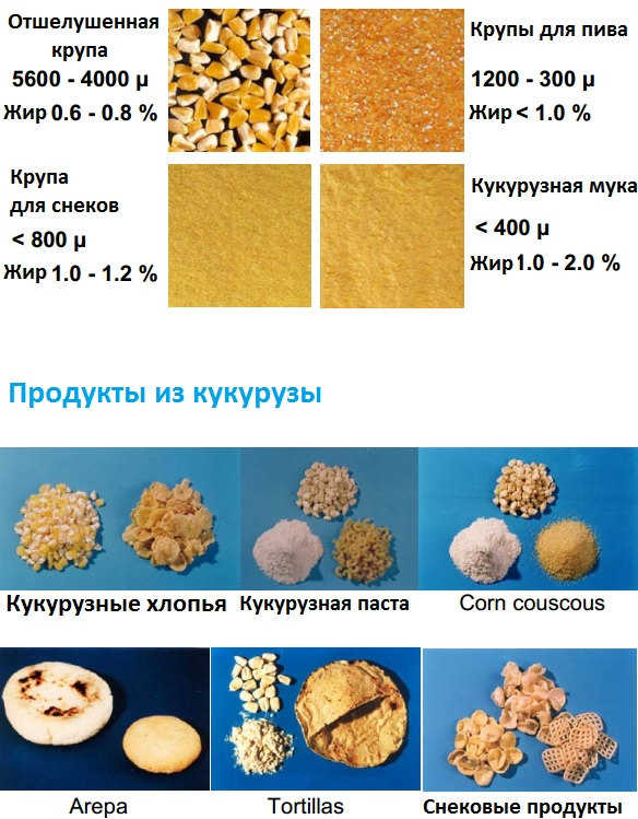 Основные продукты после дежерминации и размола зерна
