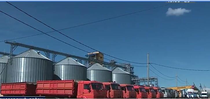 Глубокая переработка зерна кукурузы в Алексеевском районе, Волгоградской области